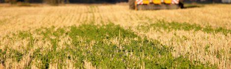 Maanviljelijä – ruuantuottaja ja päästökauppias