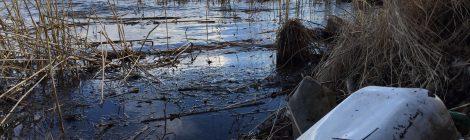 Roskia, jätteitä ja jätevesiä - konkreettisia toimia vesiensuojeluun